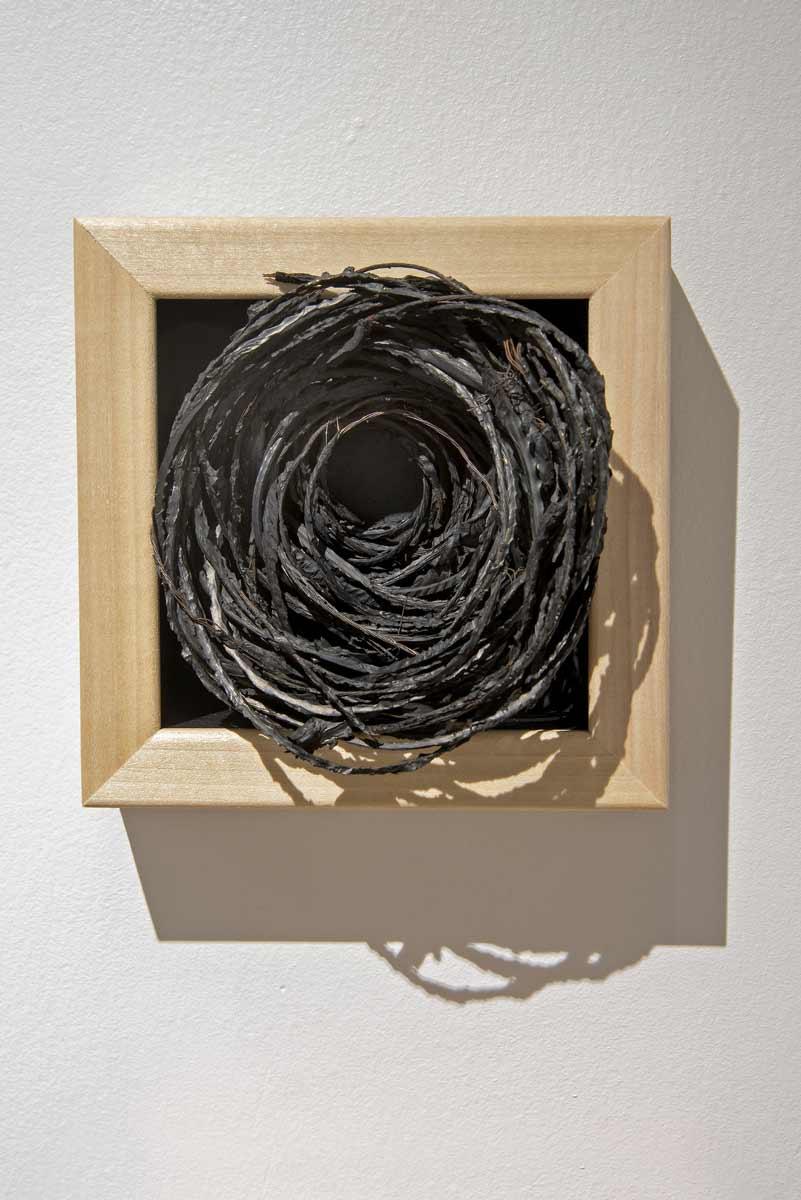 Nest-1-x1